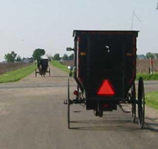 Amish Buggy outside of Arthur, Illinois